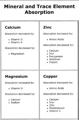 Mineral and Trace Element Absorption